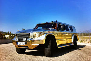 New Photos of The Dictator's Gold Dartz Prombron