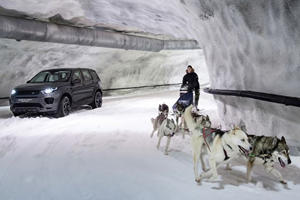 Land Rover Tests The Discovery Sport Against Sled Dogs
