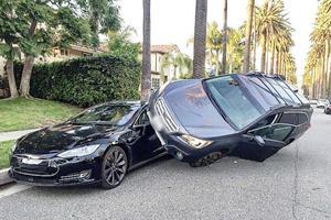 Subaru Driver Blames Animal For Mounting Tesla Model S
