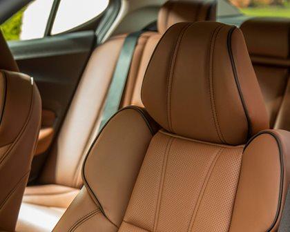 2018-2019 Acura TLX Sedan Front  Headrest