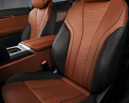 2019 BMW 8 Series Seat Support