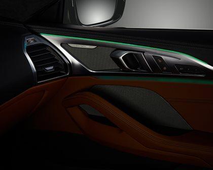 2019 BMW 8 Series Door Panel With Lighting