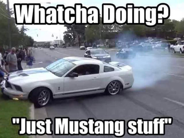 224626 cue the mustang memes because ford has just issued a huge recall